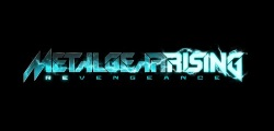 Metal Gear Rising Revengeance game