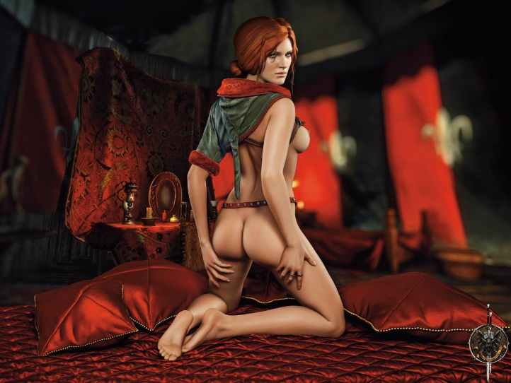 Triss Merigold Playboy mini 4