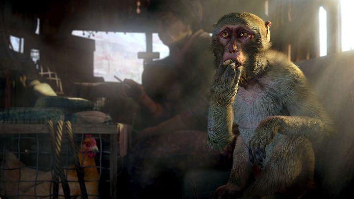 Far Cry 4-5