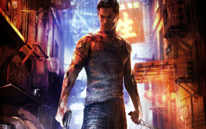 Sleeping dogs 1