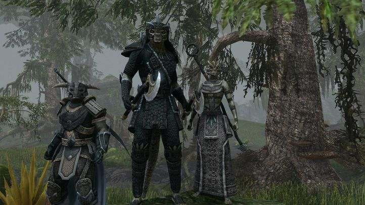 The elder scrolls online 10