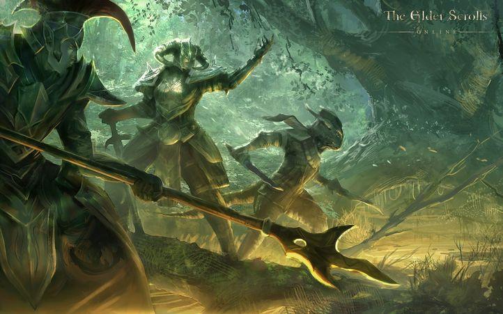 The elder scrolls online 19