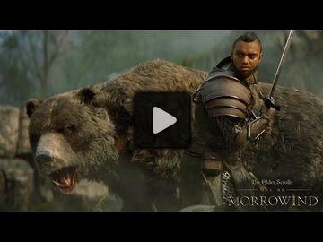 The elder scrolls online video 38