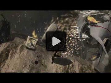 Tomb raider video 11